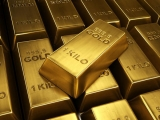 A aruncat la gunoi lingouri de aur de 500.000 de dolari