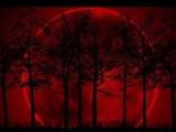 """A doua eclipsă de lună din 2014 aduce pe cerul Terrei """"LUNA SÂNGERIE"""""""