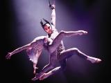 Acrobată de la Cirque du Soleil, moartă după o căzătură de la 15 metri VIDEO
