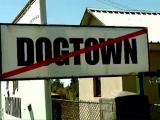 "Afacerea ""Dog Town"" și Sorin Oprescu"