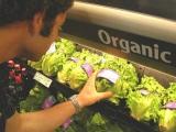 Alimente organice pe care trebuie să le consumi