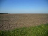 Arendașii terenului Ioanei Băsescu, amendați cu zeci de mii de euro
