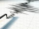 Cutremur de 3.8, în Vrancea. Șapte cutremure s-au produs în România în acest week-end