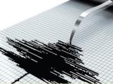 Cutremur de 6,6 grade în Indonezia