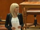 Deputații au aprobat cererea de urmărire penală în cazul Elenei Udrea