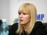 Elena Udrea ar putea scăpa de arest