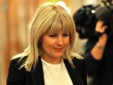 Elena Udrea dă statul în judecată