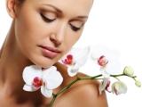 Reguli esențiale de îngrijire pentru prevenirea îmbătrânirii pielii