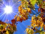 SEPTEMBRIE 2014, cea mai caldă lună de toamnă din istorie