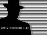 """Soluția deconectării """"Mafiei"""" de la Buget: Depolitizarea administrației publice"""