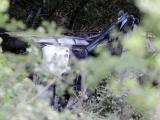 Tragedia din Muntenegru. Firma de transport nu avea licentă!