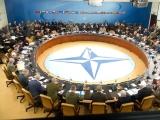 UCRAINA cere să intre în NATO