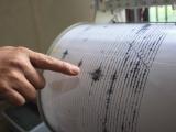 Un nou cutremur în Vrancea. Vezi ce intensitate a avut seismul