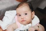 Violeta şi familia ei, vă cer ajutorul!