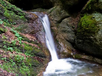 apa-unica-pe-terra-intr-o-statiune-montana-din-romania-43544-1.jpg
