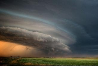 cod-galben-de-furtuna-in-mai-multe-regiuni-ale-tarii-46541-1.jpg