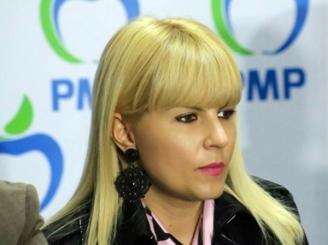 elena-udrea-timisa-in-judecata-in-dosarul-gala-bute-46360-1.jpg
